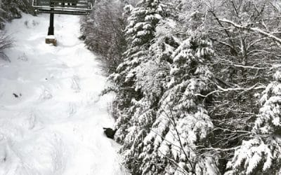 7 Winter Activities to Enjoy Near The Alpine Lodge in the Adirondacks