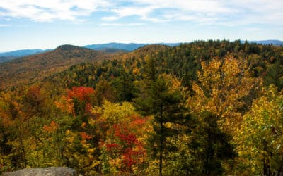 2020's Best Ways to Celebrate Fall, Upstate New York-Style